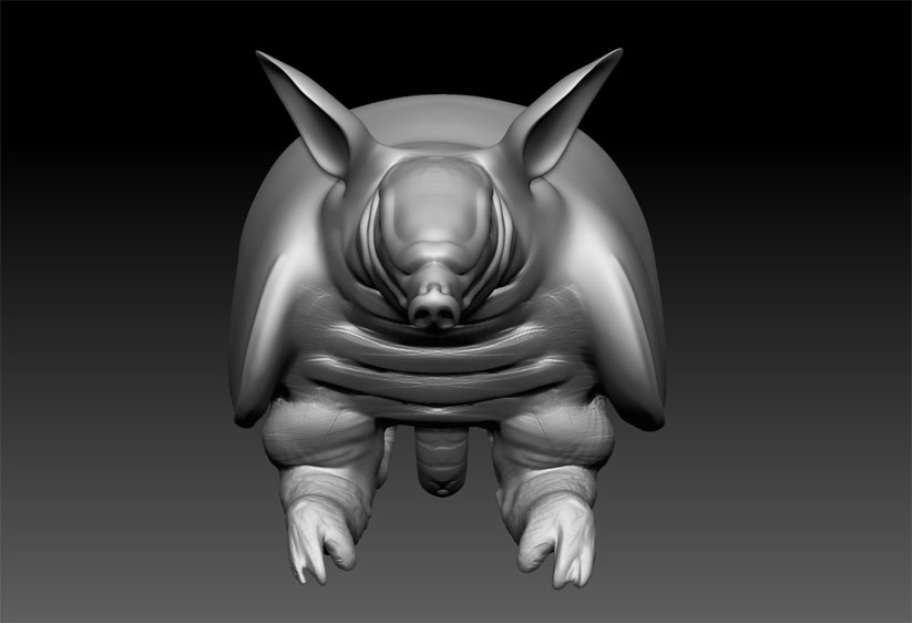 Speed Sculpt Armadillo 2