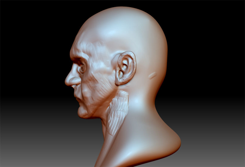 Speed Sculpt Stewart 3