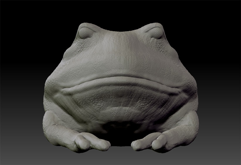 Speed Sculpt Frog 1